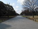 正門からの校内の景色